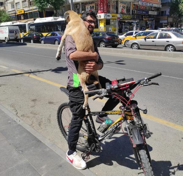 Köpeği bisikletle 5 kilometre taşımış